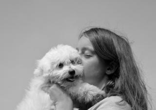 beso-perro
