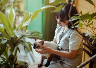 ¿Cómo darle una pastilla a un gato?