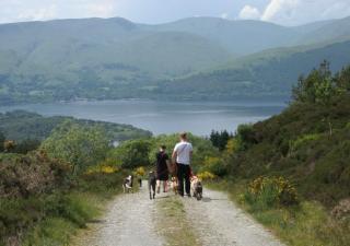 excursiones-caninas