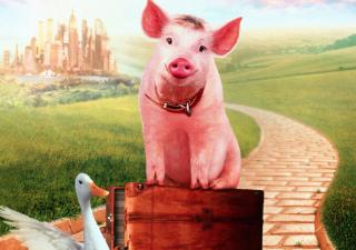 7 películas sobre animales que harán las delicias de tus hijos