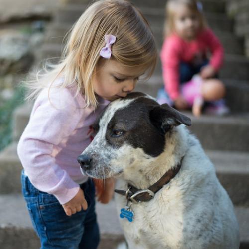 ventajas-de-criar-a-tu-hijo-con-un-perro